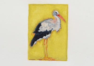 calixte-d-annunzio-oiseau-1